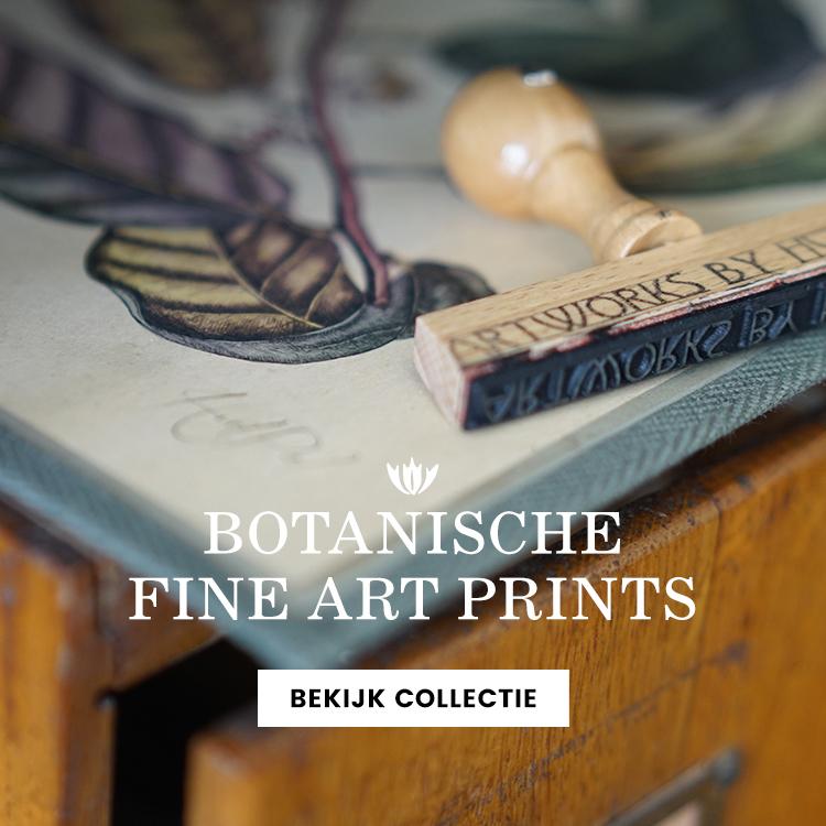 botanische prints Arnhem