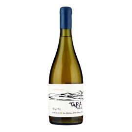 VENTISQUERO  TARA Premium Chardonnay