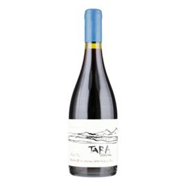 VENTISQUERO TARA Premium Pinot Noir