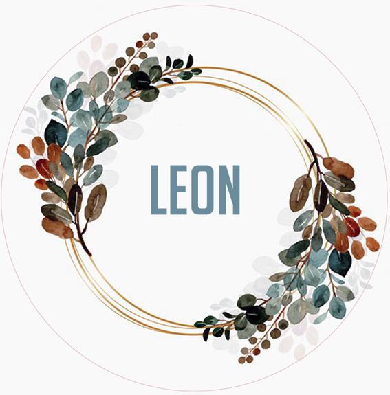 Sticker Leon Large