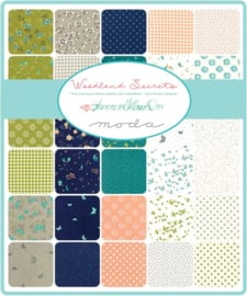 Woodland Secrets by Shannon Gillman Orr for Moda Fabrics