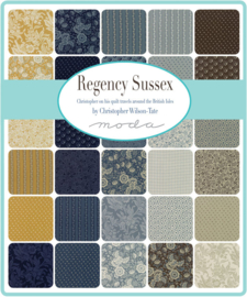 Regency Sussex by Christopher Wilson-Tate