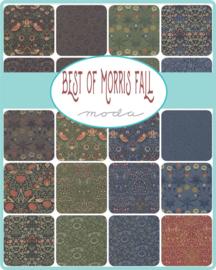 Best of Morris Fall