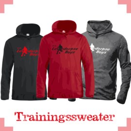 Trainingssweater Danville - Lebo