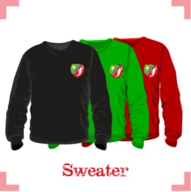 Sweater junior - Lebo