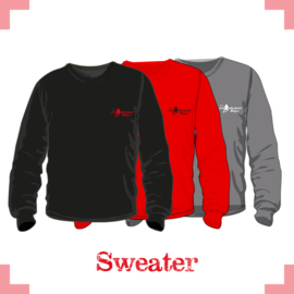 Sweater uni - Lebo
