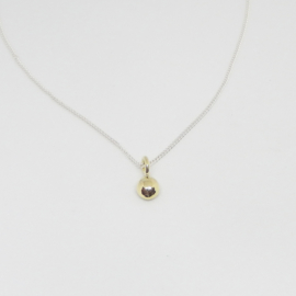 Necklace apple of my eye gold/silver