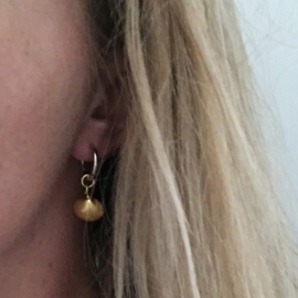 Earrings - Sealife hartschelp verguld