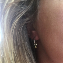 Earrings - Apple of my eye