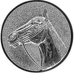 067 paard