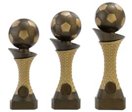Sportbeeld C163 Voetbal