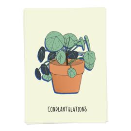 conplantulations - kaartje