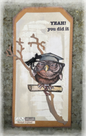 Smart Owl IV