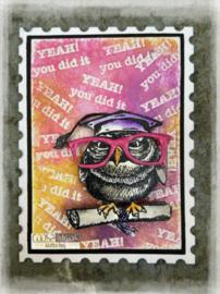 Smart Owl II