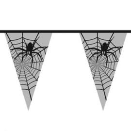 Spinnenweb met een grote spin erin - Doorzichtige Vlaggenlijn - 6 meter