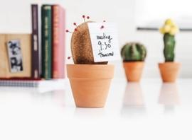 Suck UK - Kurken Cactus - Bureau Decoratie / Organizer