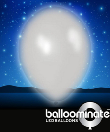 Balloominate - Led Ballonnen - Wit - 5 st/ 27,5 cm