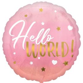 Hello World! Roze - Folie Ballon - Rond - 17 Inch/43cm