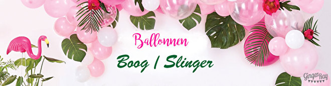 ballonnen-boog-slinger-ginger-ray.jpg