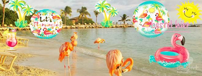 flamingo ballon. tropisch fruit, ananas, water meloeun, regenboog, palmbomen helium ballonnen voor een tropisch of zomers feest.