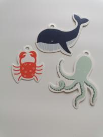 Set van 3 cadeaukaartje octopus, krab en walvis ocean