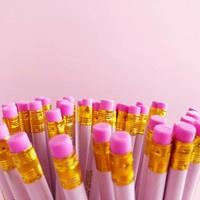 set van 6  rose potloden met gouden quotes
