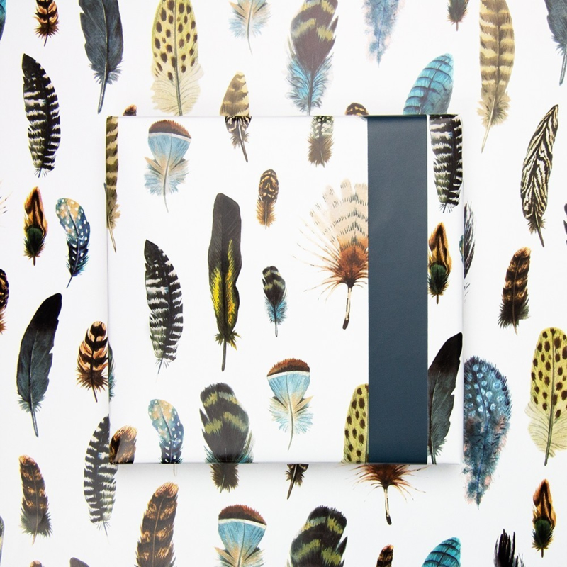 Dubbelzijdig cadeaupapier feathers, veren 70x 200 cm