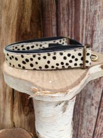 Dalmatiërs schouderband