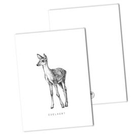 Bosdieren set van 6 stuks