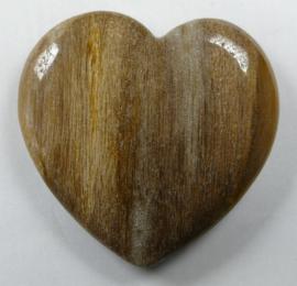 Hart Petrified Wood (versteend hout)