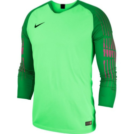 Nike groen keepersshirt Gardien II junior of compleet groen NIKE keeperstenue