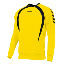 Hummel Teamlijn sweater geel junior