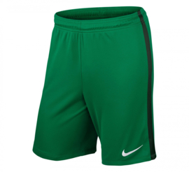 Nike league knit voetbalbroek groen