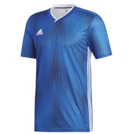 Adidas Tiro 19 blauw shirt korte mouw