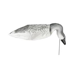Sillosocks Snow Goose / Sneeuw Gans Head Down