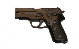 Sig Sauer Model 228