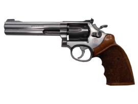 Smith and Wesson 617 STS 6''