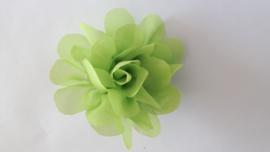 Haar bloem gif groen 4 cm