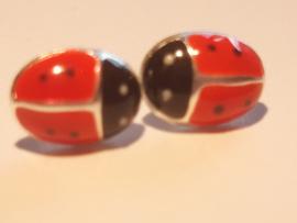Zilveren oorbellen lievenheersbeestje