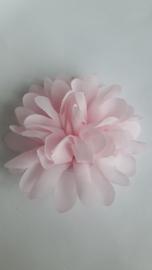 Haarbloem  11 cm licht roze