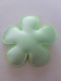 Bloem 47 mm mint groen