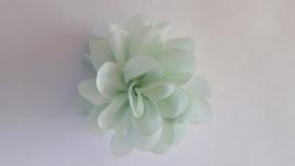 Haar bloem mint 4 cm