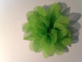 Haar bloem 8 cm groen (niet meer bestelbaar)