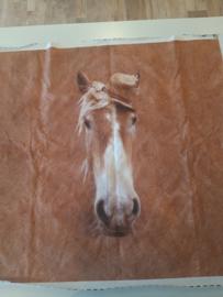 Trico paneel paarden