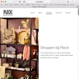 Website Pleck