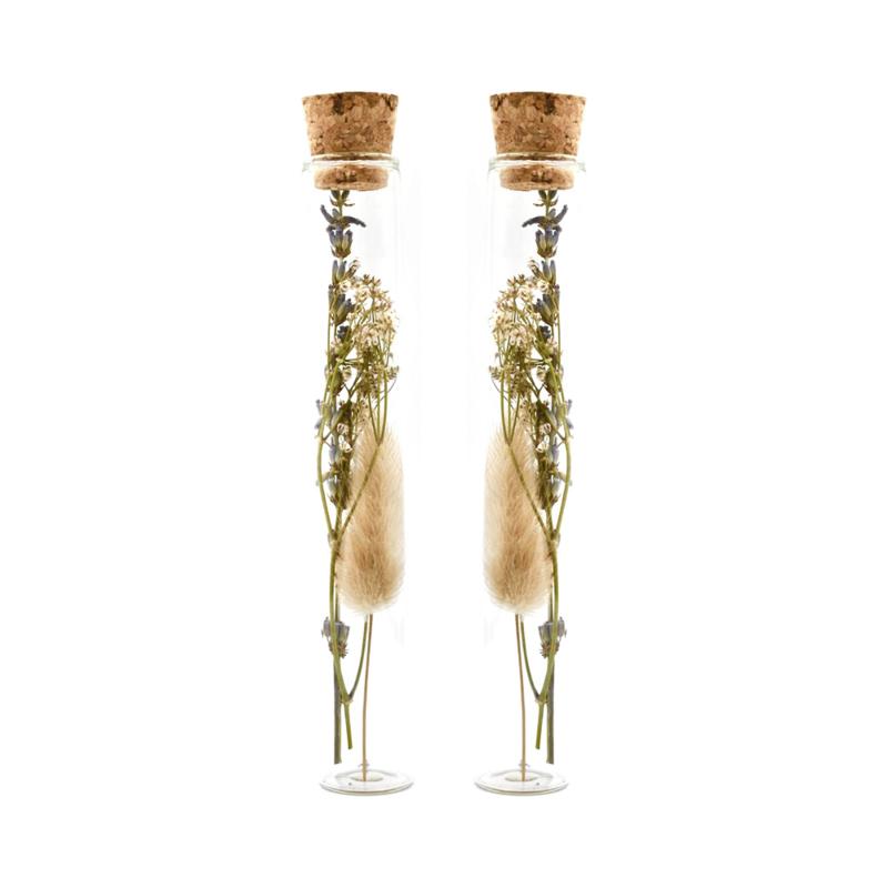 Duo setje Droogbloemen in glazen buisje