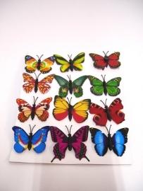 verassing vlinders