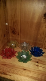 Lotus bloemen Blauw
