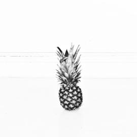 houten photoblock ananas
