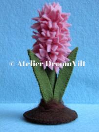 Patroonblad 'Hyacinth'